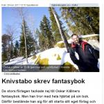 printscreen av artikeln